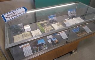 星川上流~県立図書館方向へ歩く.jpg