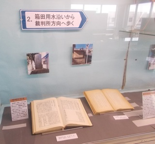 箱田用水沿い〜裁判所方向へ歩く.jpg