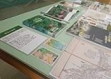 「埼玉の自然」展示風景